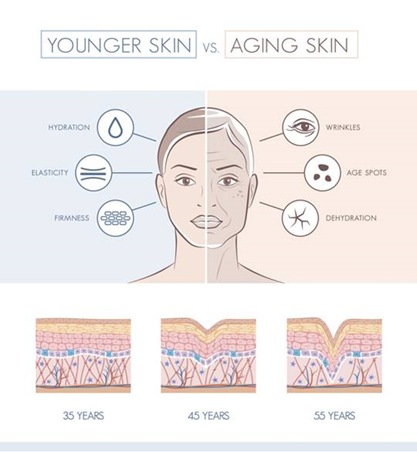 volumina weyergans younger skin